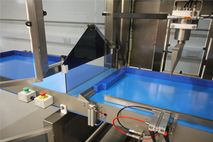 Industrial Food Slicer Machines